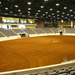 Kentucky Horse Park 1